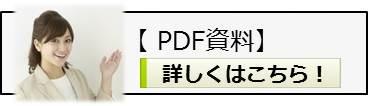 PDF資料案内